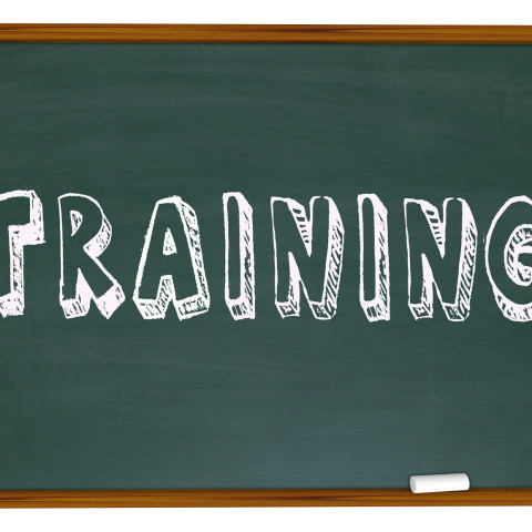 The word Training written or drawn on a school classroom chalk board, illustrating the need and importance to be educated in skills that will help you succeed in life